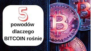 prognoza bitcoin în dolari cum să faci bani relevanți
