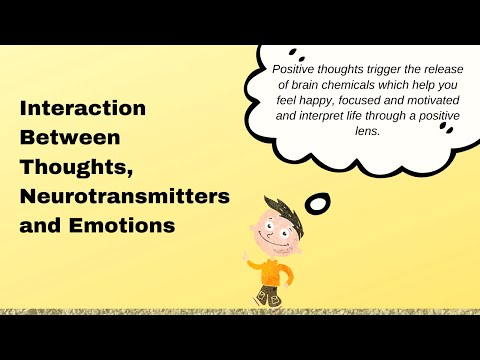 Understanding The Mind Body Connection The Interaction Between Neurotransmitters, Thoughts & Emotion