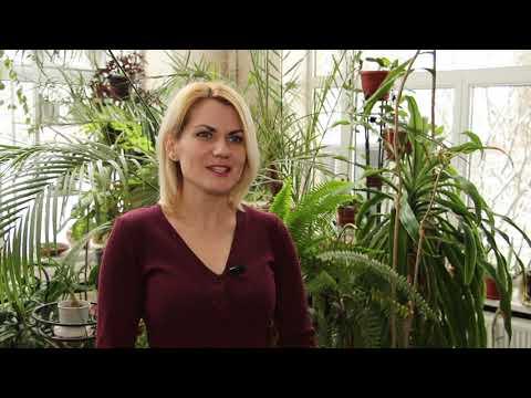 ObjectivTv: Романтичні історії мешканців Харківського зоопарку