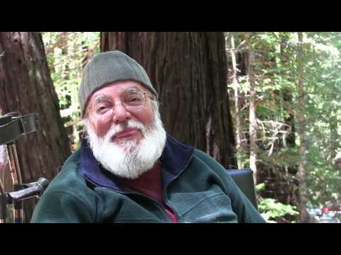 Mendocino Sufi Camp - A Deep Forest Experience
