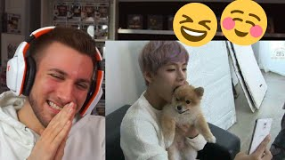 CUTEEEE 🥰💜 BTS with Animals Compilation - Reaction