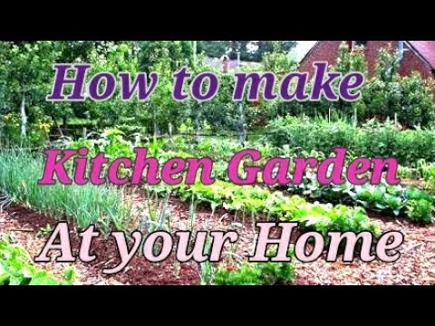 How To Make A Small Kitchen Garden At Your Home Youtube