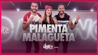 Baixar Pimenta Malagueta - Rafa e Pipo Marques   FitDance TV (Coreografia Oficial)