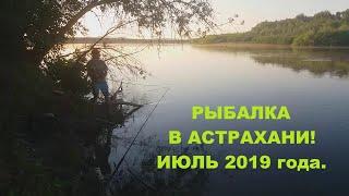 РЫБАЛКА И ОТДЫХ В АСТРАХАНИ ИЮЛЬ 2019 года.