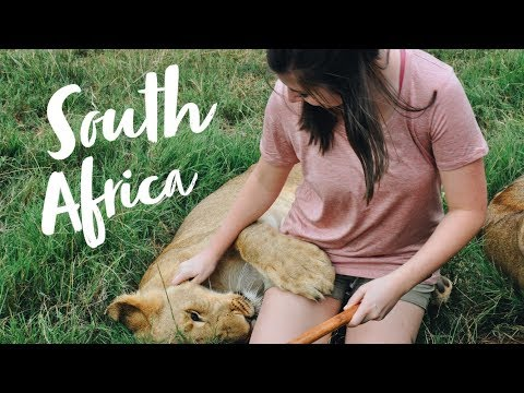 VOLUNTEERING AT A WILDLIFE SANCTUARY  |  South Africa