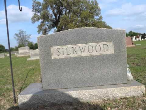 Paranormal or Just Normal? - Karen Silkwood