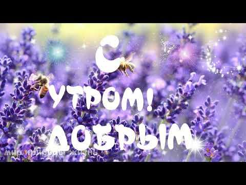 Доброе утро-шикарная музыкальная видео открытка с добрым утром, хорошим днем, СУПЕРПОЗИТИВ!