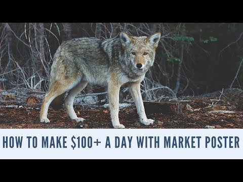 How To Make $100+ A Day With Market Poster