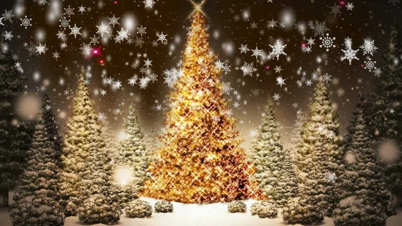 snowflakes falling christmas trees motion graphic video loop free