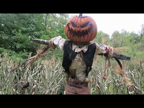 Scarecrow Exhibit at New York Botanical Gardens 2016