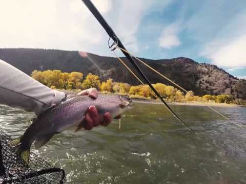 Swinging Streamers - Yellowstone River Montana