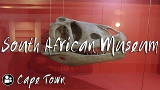 South African Museum was actually FREAKING AMAZING | Things to do in Cape Town