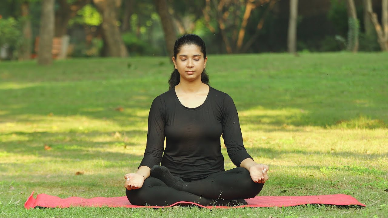 Indian Girl Doing Pranayama In A Green Park Stock Video | Knot9