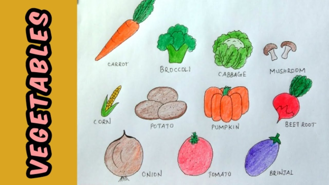 How To Draw Easy And Colourful Vegetables With Their Names I Step By Step I Youtube