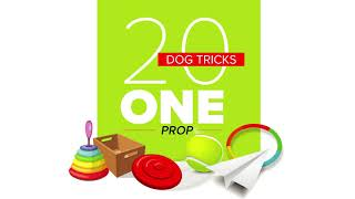 20 Dog Tricks using One Prop (specialty title)