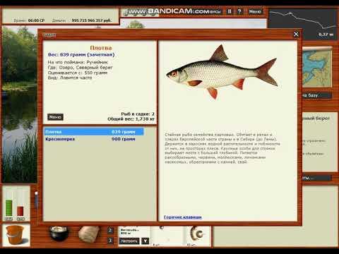 Где ловить зачётную рыбу На озере?В русской рыбалке 3.