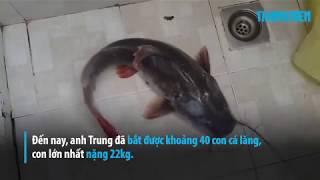 Cận cảnh cá lăng khủng được bắt dưới đáy sông Đồng Nai