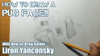 How To Draw A Pug Face - Step By Step