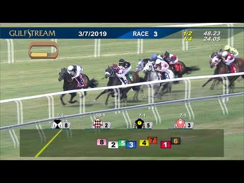 Gulfstream Park March 7, 2019 Race 3