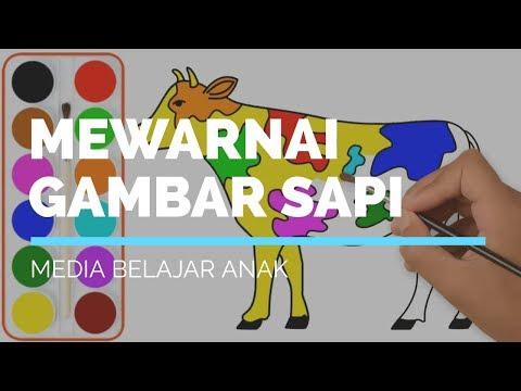 Full Download Belajar Gambar Mewarnai Sapi Dll Kids Creative