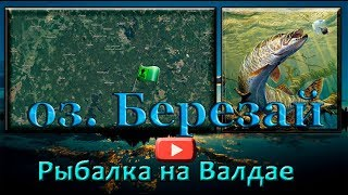 Рыбалка на Валдайских озерах. оз. Березай