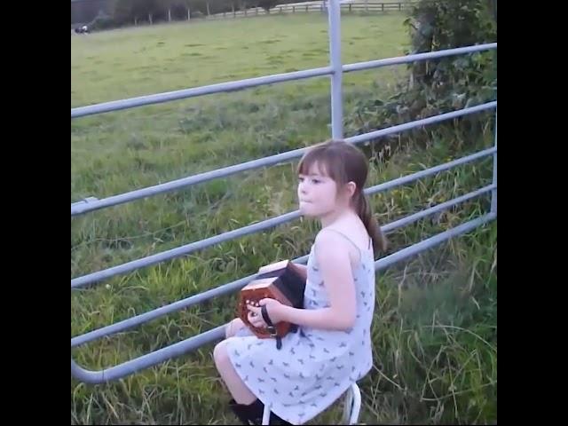 Little Girl Serenades Herd of Cows