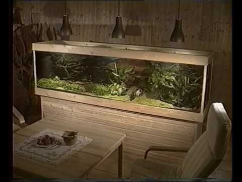 aquarium funnydog tv. Black Bedroom Furniture Sets. Home Design Ideas