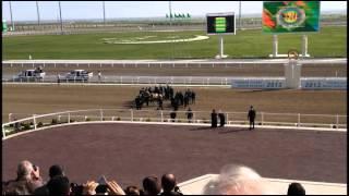 Туркменистан: Бердымухамедов упал с лошади на всем скаку