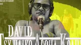 David-Tsy haiko aloha koahy (Official Audio)