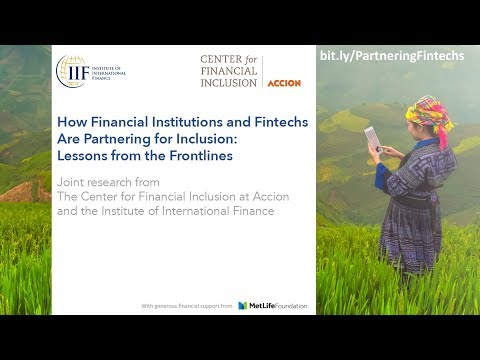 How Financial Institutions and Fintechs Are Partnering for Inclusion