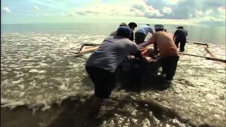INDIAN OCEAN TSUNAMI: BUILDING BACK BETTER
