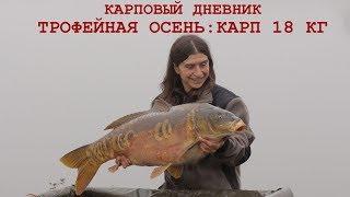 Секреты рыбалки на карпа осень холодная вода Клипсование удилищ насадка прикормка оснастка