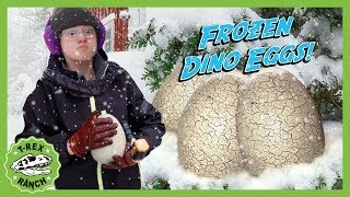 FROZEN Dinosaur Eggs! T-Rex Ranch Mystery Egg Hunt in the Snow with Surprise Dinosaurs for Kids!