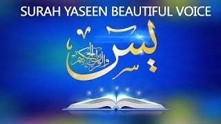 Surah Yaseen (16D Audio) Beautiful Heart Touching Voice