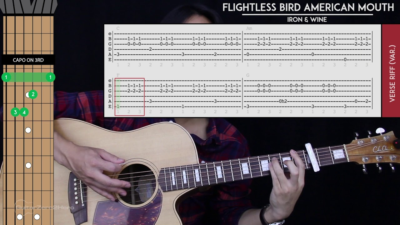 Flightless Bird American Mouth Guitar Cover Acoustic Iron Wine