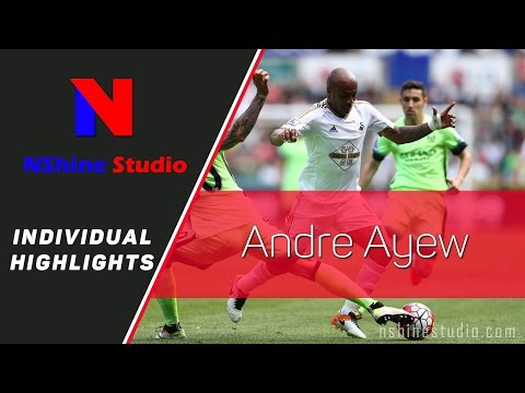 ANDRE AYEW 2016 - Individual highlights goals, skills, assist,... NShine Studio