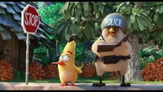 Angry Birds уже в кино история Чака!!!
