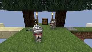 [Minecraft] - Tipy a triky, 1 - 5, Opravování chainů železem, Spruce pěstování a Hyeny