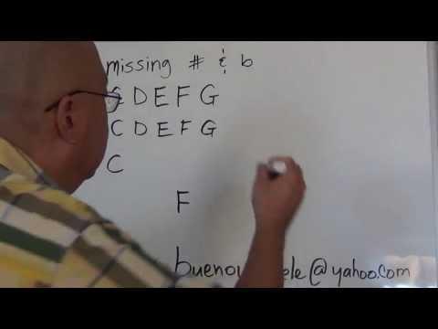 Ukulele Lessons Introduction to Music Theory