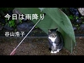 「今日は雨降り」 谷山浩子 歌詞付き