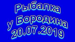 Риболовля у Бородіна 20 07 2019