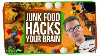 How Junk Food Hacks Your Brain