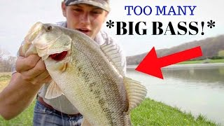 BASS FISHING AT IT'S BEST! *LOTS OF ACTION!*