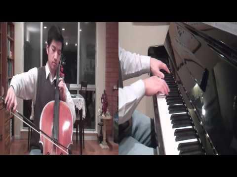 Titanium David Guetta ( Cello Cover)