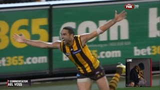 2013 Preliminary Final - Hawthorn Vs Geelong (SEN commentary)