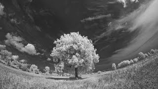How To - Digital Infrared Photography