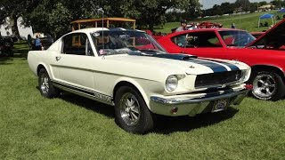 1965 Ford Mustang Shelby GT 350, first year for the Shelby Mustang - My Car Story with Lou Costabile