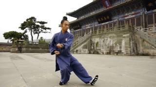 Wu Dang Tai Ji 13 -- Xiao Yun 肖云太极十三式