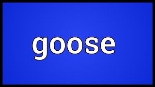 Goose Meaning