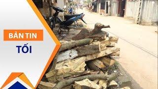 Dẹp vỉa hè, chặt cả cây xanh ở Thạch Thất | VTC